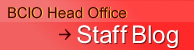 BCIO Head Office Staff Blog